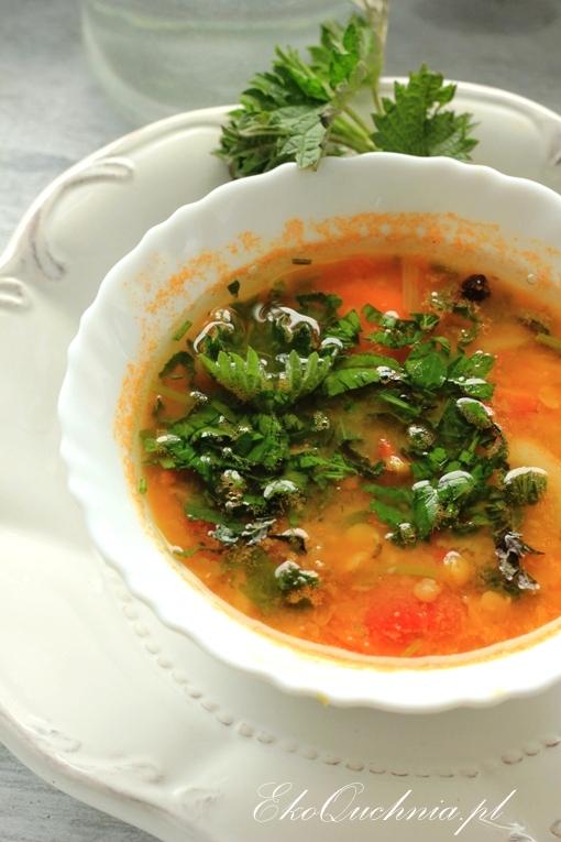 zupa-pokrzywowa1