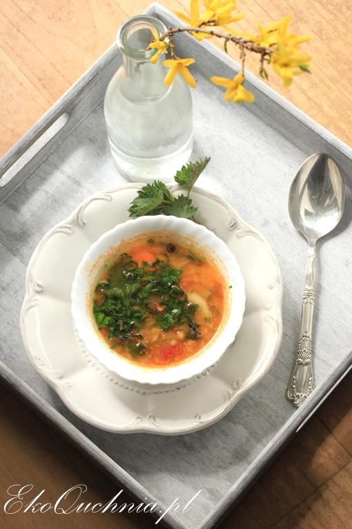 zupa-pokrzywowa3